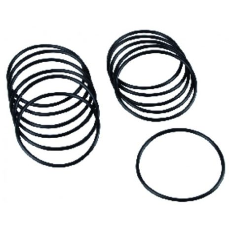 Accessories of filter - Spare gasket for tank after december 95(X 12)