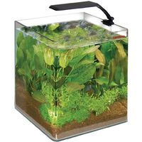 Tappetino Per Acquari Safe Plan 30 X 20cm Amtra Amtra Latest Technology Other Fish & Aquarium Supplies