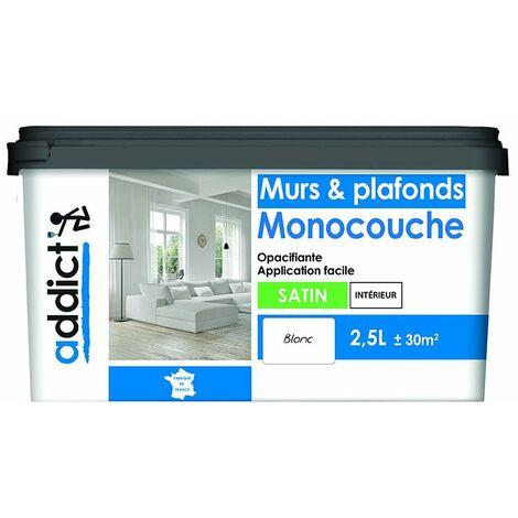 "main image of ""Addict Murs & Plafonds Monocouche Acrylique Satin 2L5"""