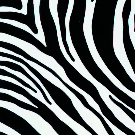 Adhésif Decors Zebra 45cm x 2m