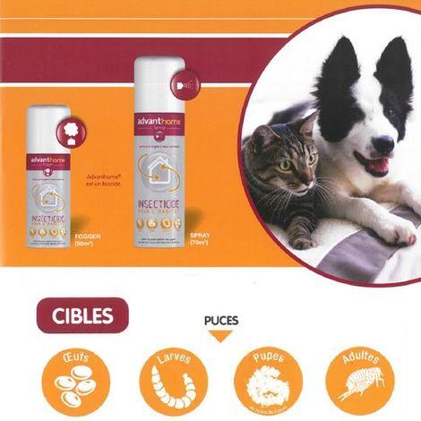 Advanthome - Protection anti puce de l'habitat du chien Désignation : Advanthome Spray 250 ml Bayer 678275