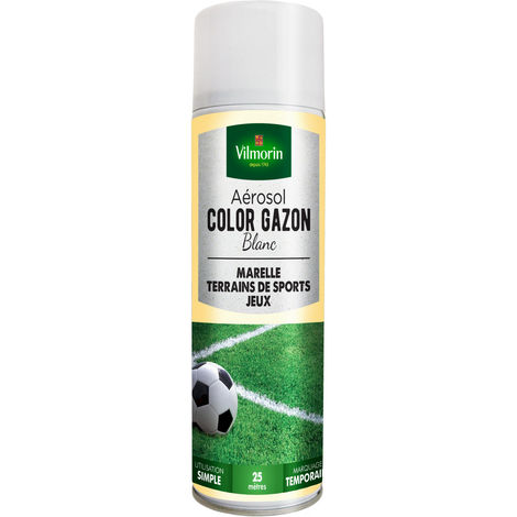 Aérosol COLOR GAZON blanc 300 ml