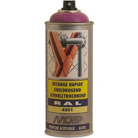 """main image of """"Aérosol de peinture RAL MOTIP - plusieurs modèles disponibles"""""""