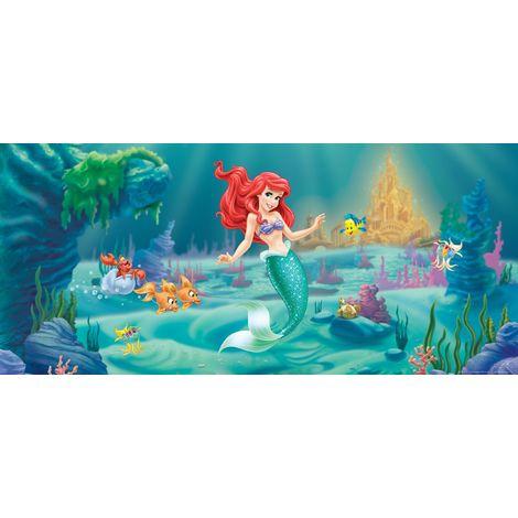 Adesivi Murali Principesse Disney.Ag Design Ftdh 0620 Photo Wallpaper Adesivo Da Parete Adesivo Da Parete Motivo Carta Da Parati Con Foto Omurals Disney Ariel