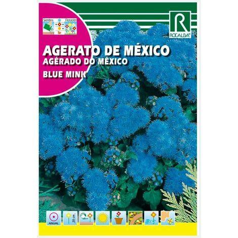 AGERATO DE MEXICO ENANO BLUE MINK - SOBRE DE SEMILLAS 1G
