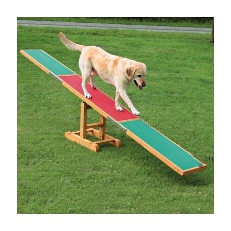 Agility Wippe