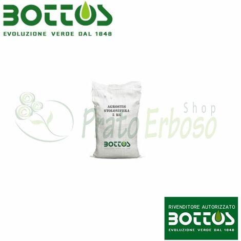Agrostis Stolonifera Alpha - Graines pour pelouse-1 Kg