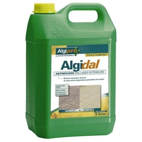 Algidal - elimine mousses lichens sans chlore - bidon de 15l