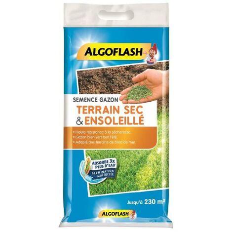 ALGOFLASH Semences gazon terrain sec et ensoleillé - 5 Kg