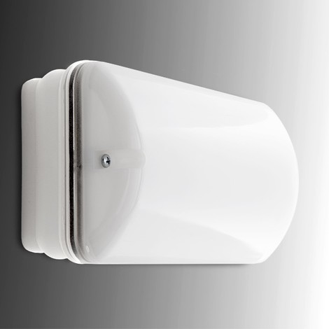 Alumbrado Emergencia LED 100Lm 1 Hora IP65 3.6V 0.8Ah (GH-C1000014LP)