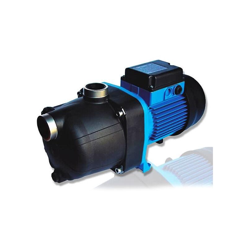 Zodiac - Amplificador mono de 1 hp - BP/W4530247 - polaris -