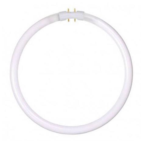 Ampoule T5 - 2GX13 Circulaire 32W 4000K 2550lm D24 cm
