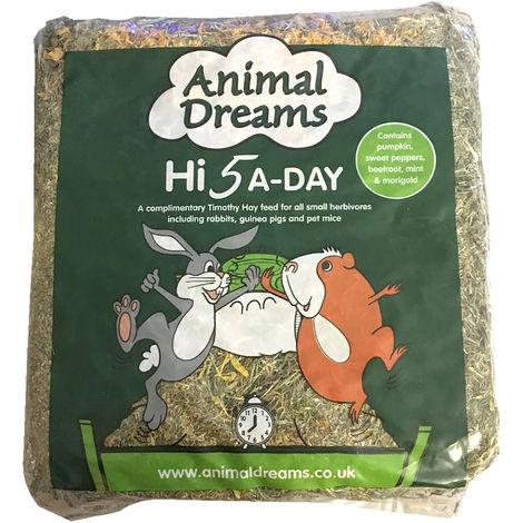 """main image of """"Animal Dreams Hi 5 A-Day Timothy Hay (Single) (May Vary)"""""""