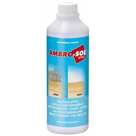 Anti-moisissure 500 ml - P314 - Ambro-sol - -