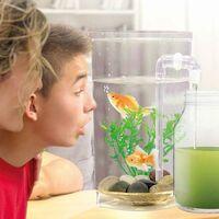Aquarium autonettoyant Fish Wonder