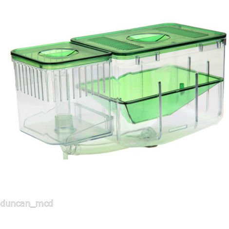 Aquarium Cichlid & ¨¦S Fish Egg Bo & Î?Te D & # 39;?& Brooding Hatchery Incubator