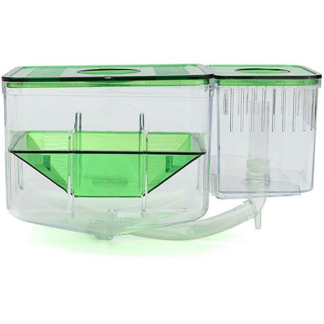 Aquarium cichlidés poissons oeuf boîte d'élevage incubateur couvoir couveuse