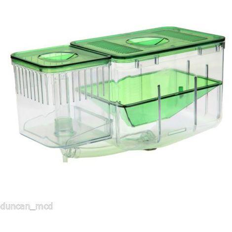 Aquarium cichlidés poissons oeuf bo?te d'élevage incubateur couvoir couveuse Sasicare