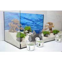 Aquarium Dekoration Komplettset - Bonsai Steine Wasserpflanzen Aquascaping Nr.14