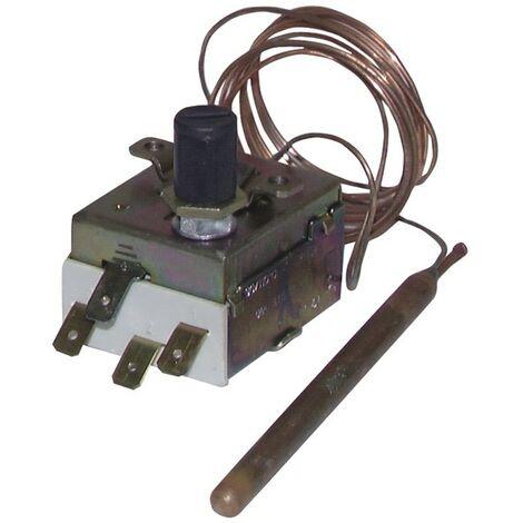 Aquastat de sécurité réarmable 90/110°C pour poêle à granulés - DIFF