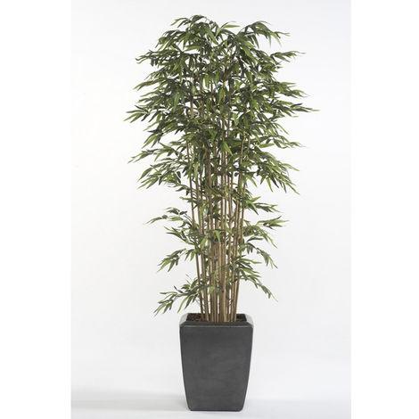 Árbol bambú acabadoQuality 1ª, tronco original