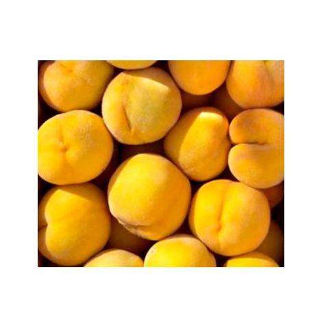 Arbol Frutal Melocotonero Melocotón de Calanda. 120 - 150 Cm