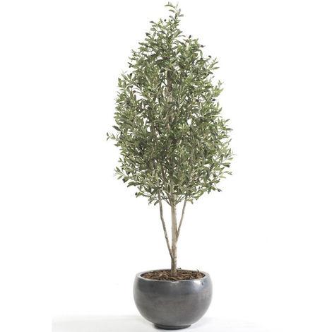 Árbol olivo, muy valorado por su calidad y realismo, 2484 HOJAS - ALTURA 145cm