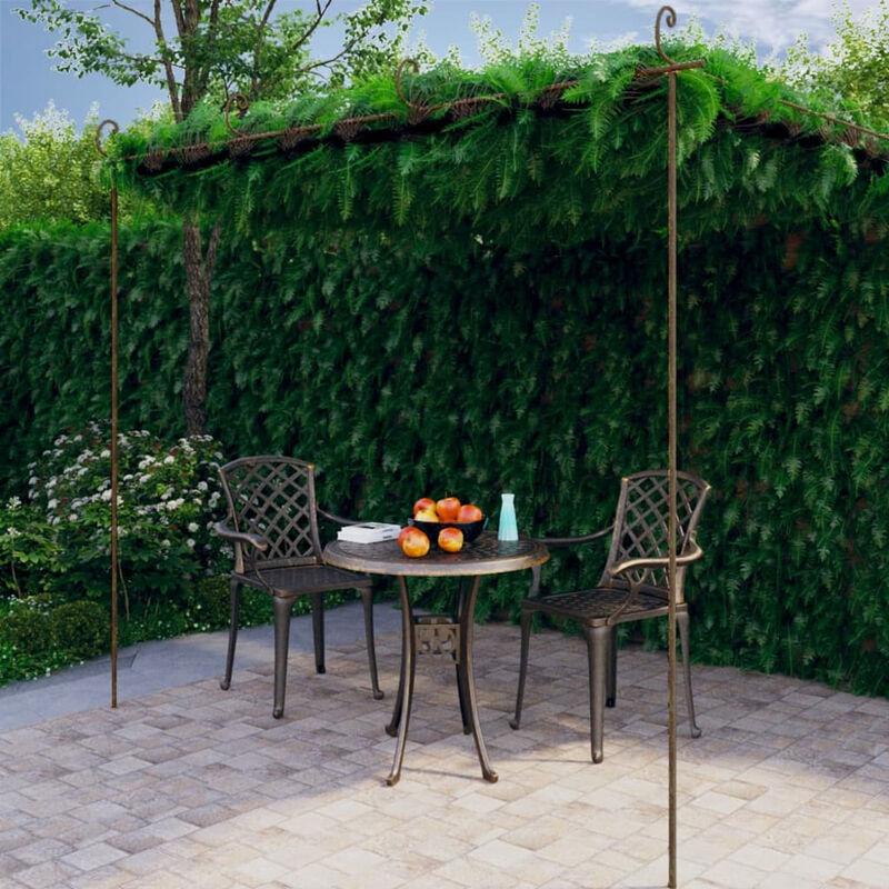 Asupermall - Arche de rosiers de jardin Marron antique 4x3x2,5 m Fer