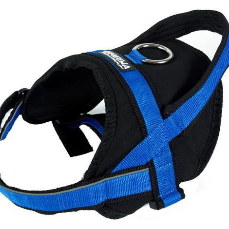 Arnés con acolchado lumbar para perros Neewa Utility Harness
