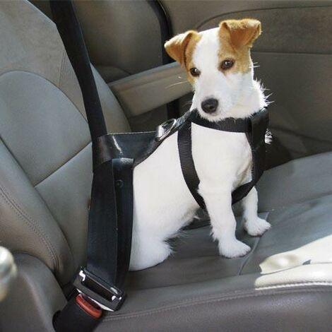 Arnés de seguridad Para llevar el perro cómodamente en los asientos sujeto a los cinturones de seguridad, Disponible en varias tallas.