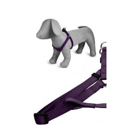 Arnés nylon 25mmx60-100cm, violeta
