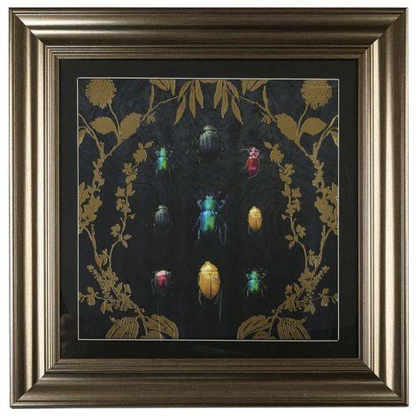 Arthouse Alchemy Bugs Framed Print 004756