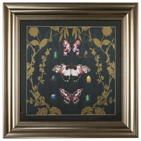 Arthouse Alchemy Butterfly Framed Print 004757