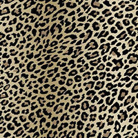 Arthouse Wallpaper Fierce Natural 618202 Full Roll
