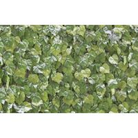 Artificial Hedging - Screening or Wall Covering - Virginia Creeper - 1x1m