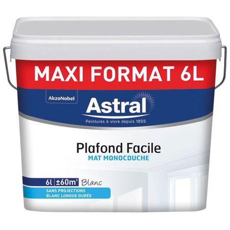 ASTRAL - Peinture plafond monocouche facile mat 6 L - blanc