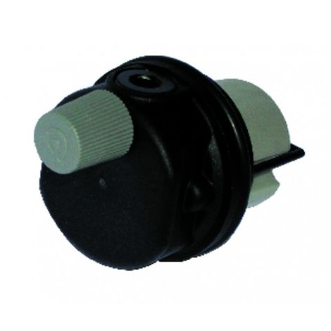 Auto air vent In plastic - FERROLI : 39818220