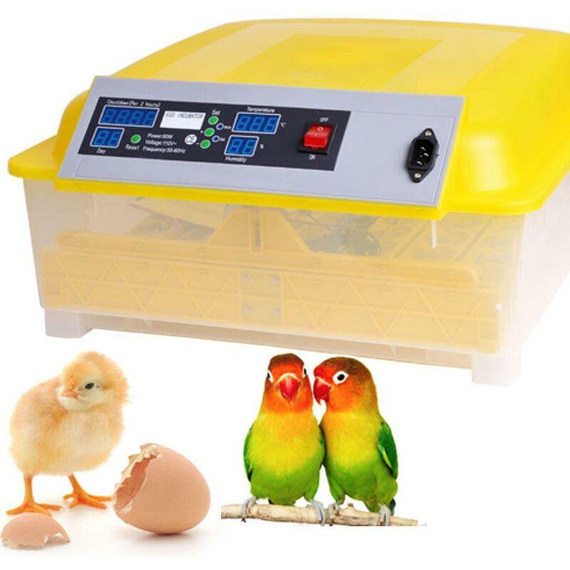 Better Maison - Automatique Intelligent 48 oeufs incubateur poulet canard oeufs Hatcher 80W EU Prise - Jaune