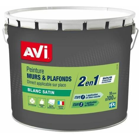 AVI peinture murs et plafonds 2 en 1 10l satin