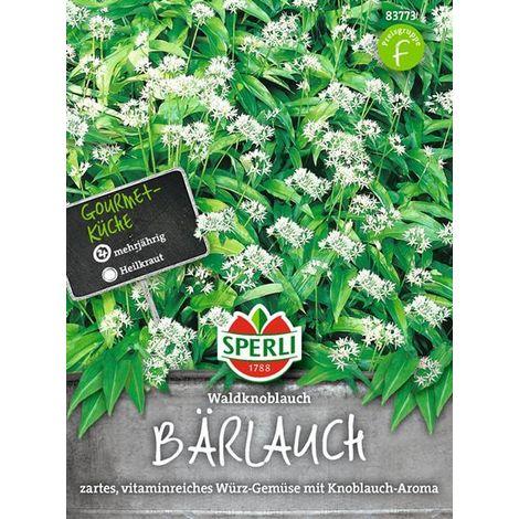 Bärlauch Wald Knoblauch