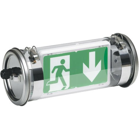BAES d'évacuation ECO 2 à LEDs 45lm-1h plastique inox IP67-IK07 SATI adressable