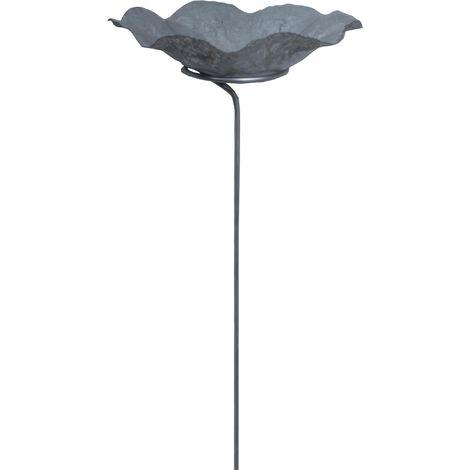 Bain oiseaux lotus avec pied