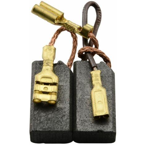 Balais de Charbon pour Hilti Marteau Perforateur TE 35 100 V - 6,3x10x19mm