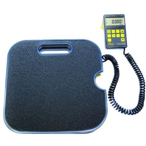 Balance électronique haute précision Ds-220