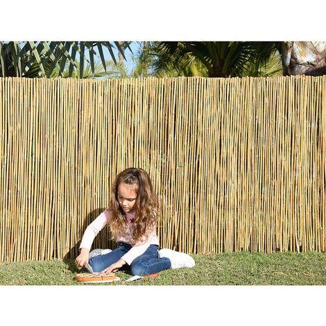 Bambú Entero - Importación