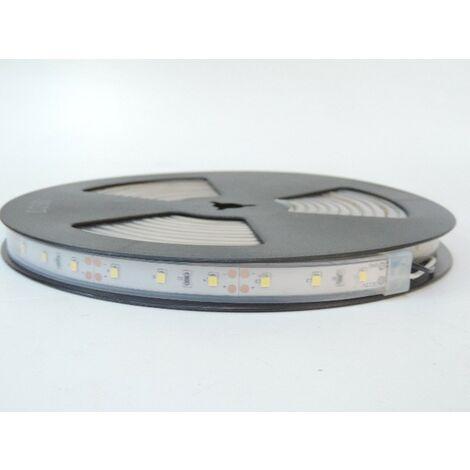 Bandeau LED 72W 6000K flexible extérieur longueur 5m 60leds/m alimentation 12V DC (non incl) IRC80 IP66 TRAJECTOIRE 003781