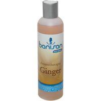 Banisan GINGER Badezusatz Whirlpool Aromatherapie 250 ml