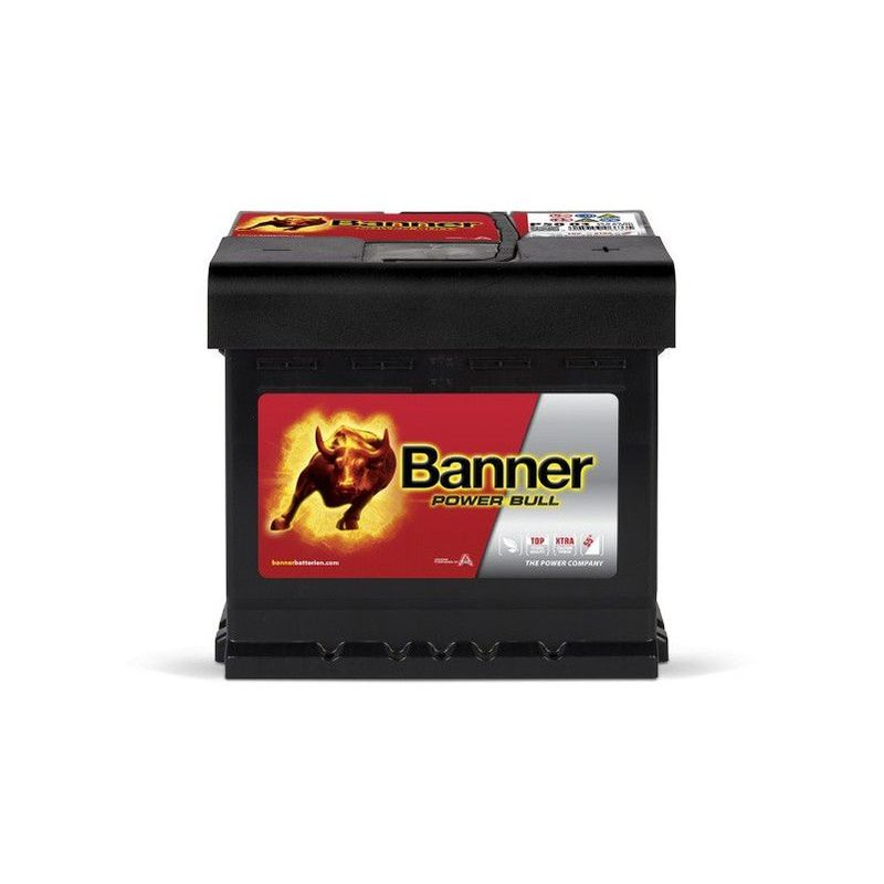 Banner Power Bull P5003 12v 50AH 450A