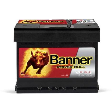 Banner Power Bull P6009 12v 60AH 540A