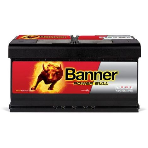 Banner Power Bull P9533 12v 95AH 780A